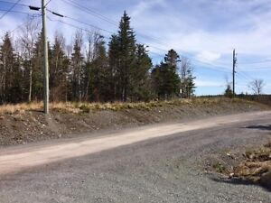 Beautiful pond front lot located in Blaketown St. John's Newfoundland image 6