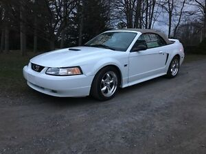 2000 Ford Mustang GT V8 5 speed convertible for sale