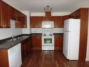 #3908 Freshly Painted 3 Bed Bi-level Unit in Smith $1000