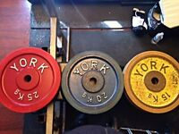 York, bodypower, hampton olympic weights (rubber edged only)