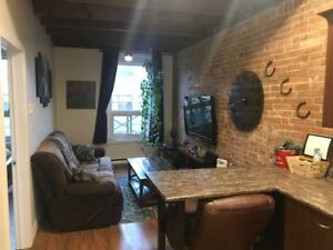 DOWNTOWN ONE BEDROOM APARTMENT FOR RENT AVAILABLE MAY 1ST