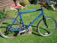 raleigh m trax mountain bike