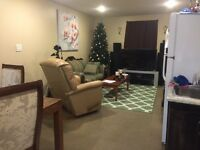 bright 3 bedroom basement suite for rent