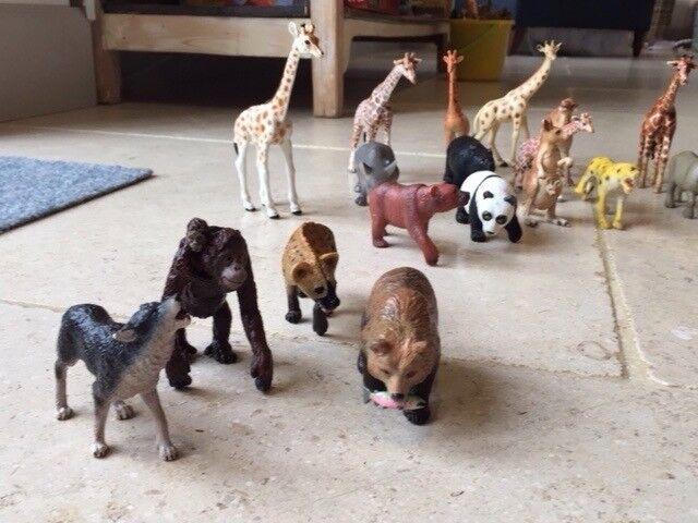 Large jungle animal set