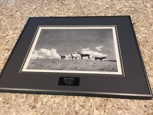 "Owen Garratt ""Sentinels"" pencil drawing framed"