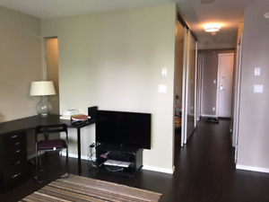 Furnished 1 bdrm available Sept in the center of DT Vancouver
