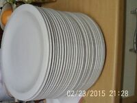 Large amount of Churchill Dinner/Dessert Plates - Used, but in VGC