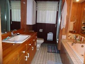 Belle maison à aire ouverter Lac-Saint-Jean Saguenay-Lac-Saint-Jean image 2