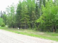 Candle Lake - Beautiful 1/3rd Acre Well Treed Lot