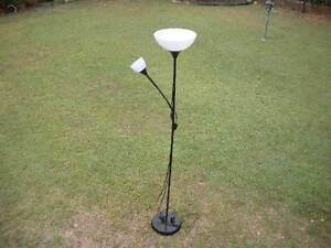 Twin Floor Lamp $25 Albion Brisbane North East Preview