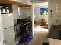 1 Bedroom/Studio for Mature Student/Professional - 8 Month Lease