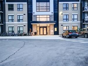 FOR LEASE - 1 bedroom (BSMNT) , 2 Bedroom (Condo) and Townhomes