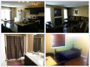 Furnished Room near Clareview LRT