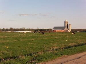 Ferme Agricolte a vendre Farm for sale