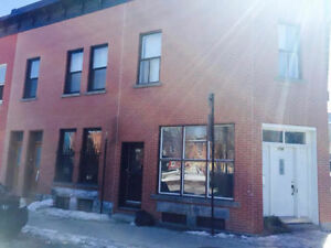 5 bedroom furnished (McGill) - Meublé 5 chambres (McGill)