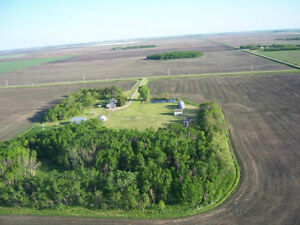 11 Acres + Home 30 Min West of Wpg - Rent / Rent to Own or Buy