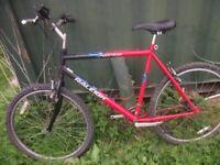 Mens mountain bike wanted