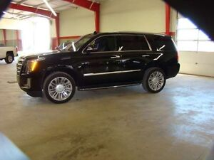 2016 Cadillac Escalade Platinum Must See Save Green PST PD!!!