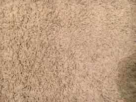 Large Cream Rug for Sale