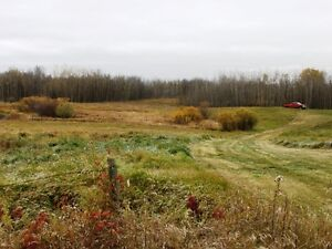 Private corner 3.88 acres available in Beaver County Strathcona County Edmonton Area image 3