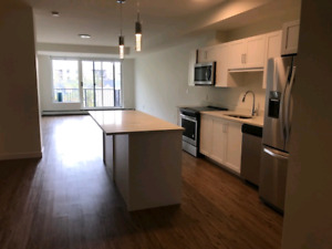 Luxury 2 bedroom 2 bath apt available April 1st