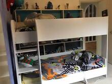 Single Bunk Beds with Shelves Bligh Park Hawkesbury Area Preview