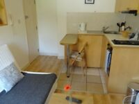 Lovely bedsit with private kitchen and shared bathroom overlooking garden. Free WIFI & SKY TV.