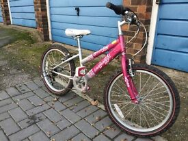 Raleigh Girls Bike 20""