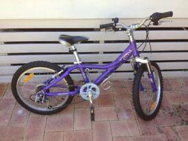 trek MTX150 children mountain bike