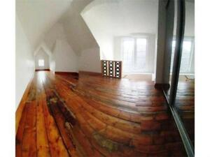 Hydro Included: Charming 2 Bedroom + Den Near Downtown