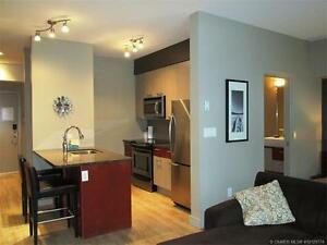 Great price for this studio apartment at ski out level