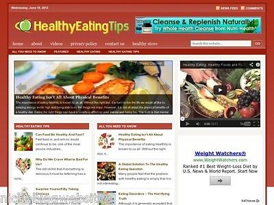 Healthy Eating   Balanced Diet Niche Wordpress Blog Website For Sale