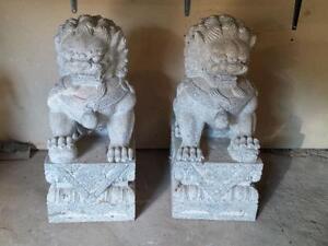 Guardian Lion Foo Fu Dogs - Granite