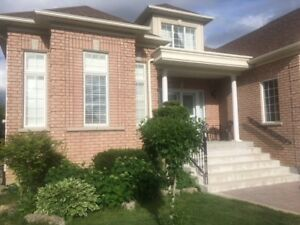 Beautiful Bright 1 Bedroom Basement for rent Vaughan/Woodbridge