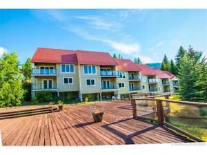 SICAMOUS - Luxury townhome 2 bed, super views-long term rental