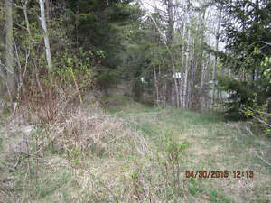 Building Lot close to city Williams Lake Cariboo Area image 1