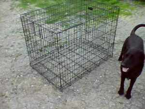 FOR SALE  --  XL DOG CRATE