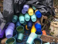 FREE. Many many plastic plant pots/small buckets