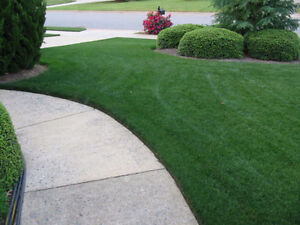 "**Premium Quality Sod Installation** ""Bring Your Homes to Life"""