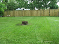 Updated home with great yard