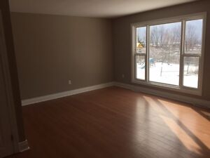Available Immediately - 3 BR - Upper and Lower Flat