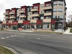 New 3 BR Condo Close to Downtown- Excellent Central Location