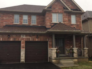 New 4 Bedroom Home for Rent in Thorold.