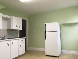 3 bedroom downtown Apt