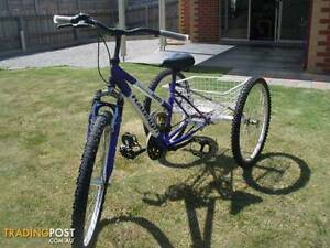 for sale 3 wheeler push bike  suitable  for disabled  person Corio Geelong City Preview