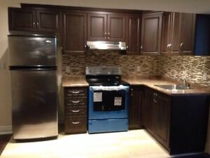 Newly constructed basement available in Vaughan/Woodbridge