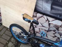 Hybrid Theory BMX Bike bicycle