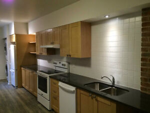 3 bedroom,renovated and Furnished