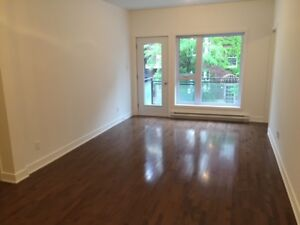 New Condo in the Village - Two Bedrooms