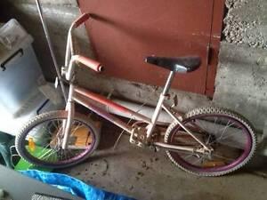 Bike girls bmx style free Trevallyn West Tamar Preview